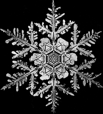 this is a snowflake he took a picture of