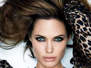 (http://puzzles-games.eu/puzzle-angelina-jolie-vanity-fair-cat-woman-966.html )