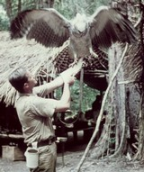 Jim Fowler with a Harpy Eagle Guyana in 1960. (http://www.naplesnews.com/news/2009/feb/19/well-known-animal-expert-helping-naples-zoo-celebr/)