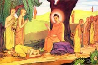 (http://jyotisha.00it.com/Buddha2.jpg)