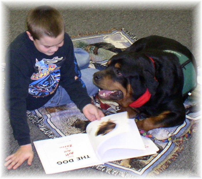 Hero the Library Dog