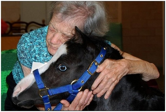 Magic Inside An Assisted Living Program (Debbie Garcia-Bengochea)