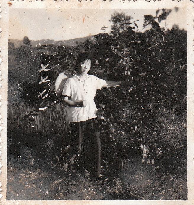 Zhou Hong Qiong