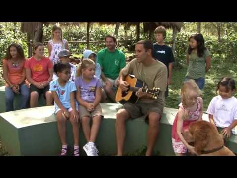 (http://article.wn.com/view/2012/08/01/Jack_Johnson_DTE_Energy_Music_Theatre_72010/)