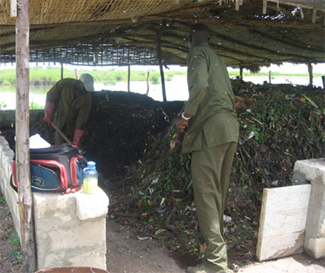 The compost facility in Joal, Senegal, West Africa<br>(Courtesy of Cheikh Seck)