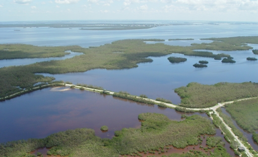 "<h4><a href=http://www.fws.gov/dingdarling/>J.N. ""Ding"" Darling National Wildlife Refuge</a></h4>"