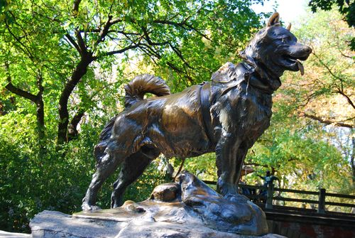 Balto's Statue in Central Park
