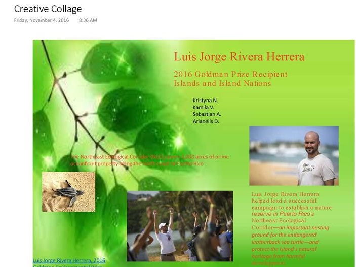 Luis Jorge Rivera Herrera (Collage about his project to save the turtles (Arianelis, Kristyna, Sebasti?n and Camila))