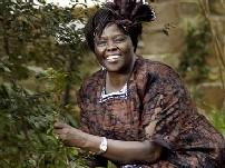 <a href=http://msnbcmedia.msn.com/j/msnbc/Components/Photos/051005/051005_wangari_hmed_6a.h2.jpg>Wangari by a tree</a>.