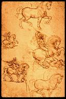 The study of Horses - Leonardo