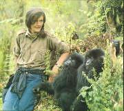 <a href=http://www.vanderbilt.edu/girlsandscience/images/image032.jpg>Dian Fossey</a href>