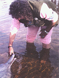 Roxanne Kremer with pink dolphin