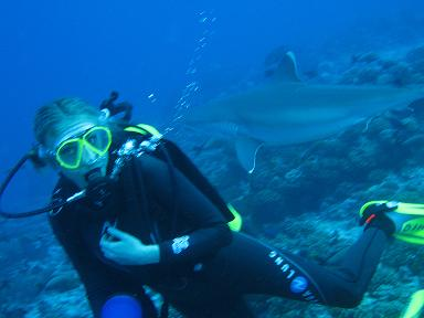 Alexandra Cousteau and friends (Steve McCulloh, Director of Dolphin Research)