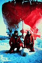 Paul Watson and Bob Hunter protecting a seal (Greenpeace.org)