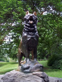 Statue of Balto (wikipedia.org)